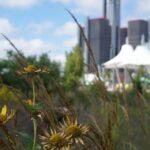 Environmental Justice- Detroit's Air Pollution